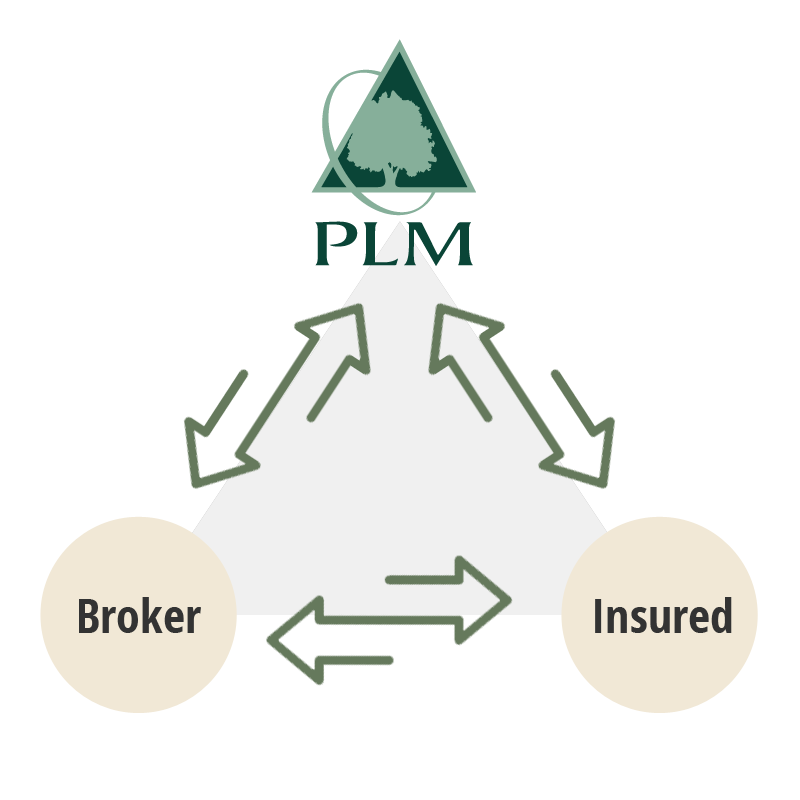 Insurance Producers & Brokers for Wood-Based Businesses